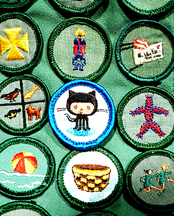 nerd_merit_badges.png