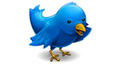 twitter-bird-thumb-300x159-77437.jpg