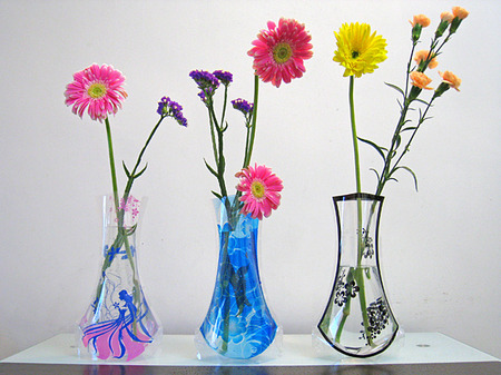 The Flat Vase That Expands When You Add Water Shinyshiny