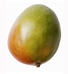 34-mango.jpg