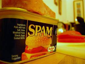 big-spam.jpg