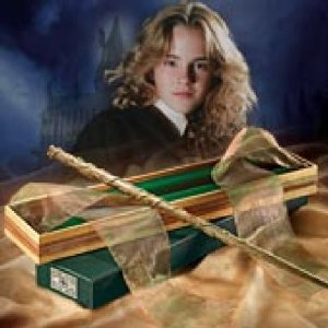hermione wand.jpg