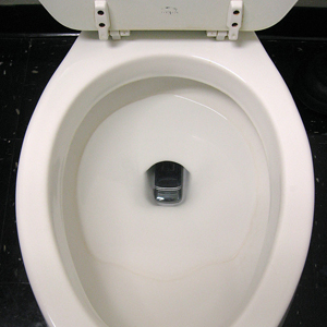 phone-in-toilet.jpg