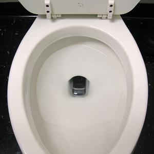 phone-in-toilet.jpg