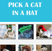 pick a cat in a hat-thumb.jpg