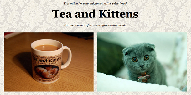 tea-and-kittens.jpg