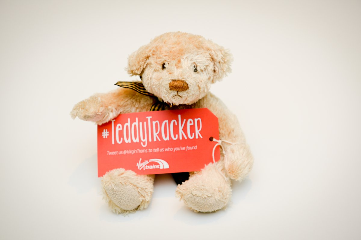 teddy-tracker