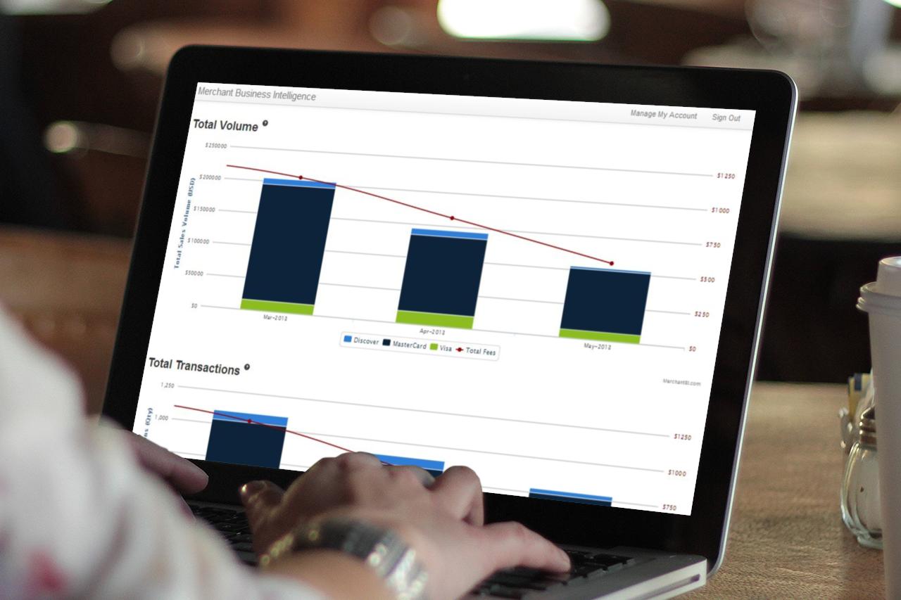 business-graphs-laptop