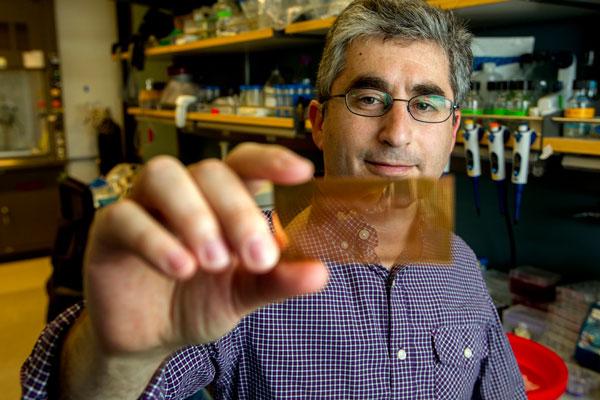miniature-diabetes-chip